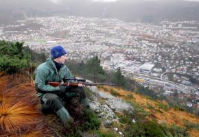 Mål om færre hjorter i Bergen