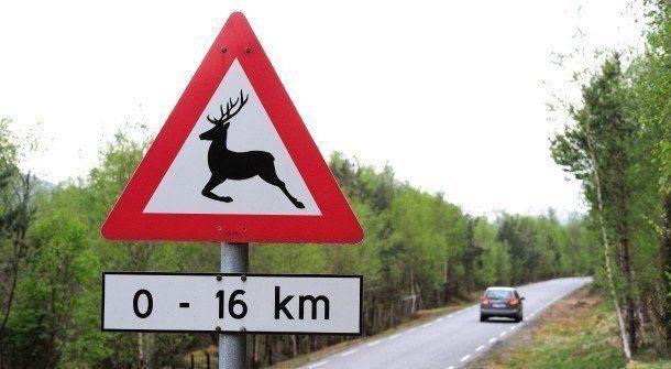Teksten under et fareskilt gir utfyllende informasjon om hvor lang distanse skiltet gjelder for. (Foto: Egill J. Danielsen)