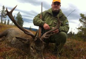 Hjorteforvaltning – mer enn bifangst under elgjakta