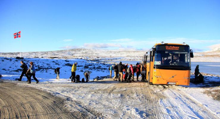 Buss er best for villreinen på Dovrefjell